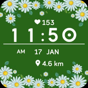 Watch face Camomiles meadow for Fitbit Versa
